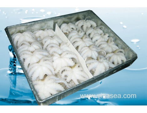 1-frozen-whole-clean-baby-octopus-1024x683